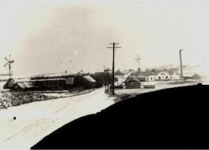 Brodal 1915