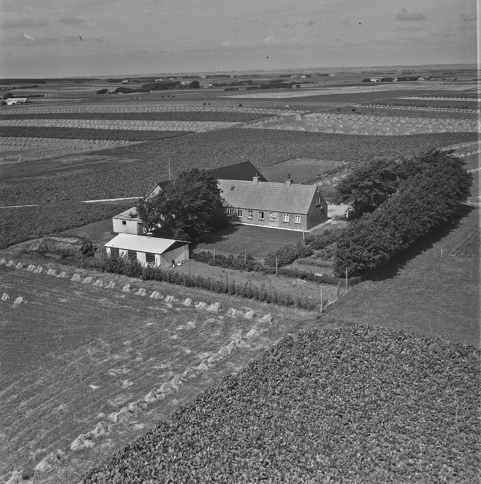 Ringvej 28 - 1958